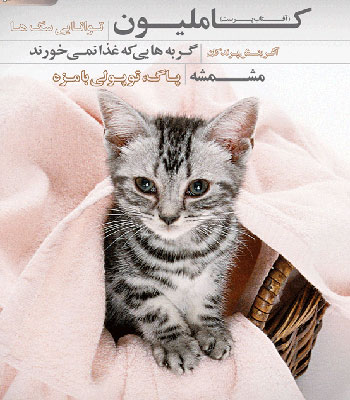 مجله حیوانات خانگی| مجله پت| مجله حیوانات