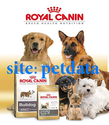 فروش غذای سگ |خرید غذای سگ