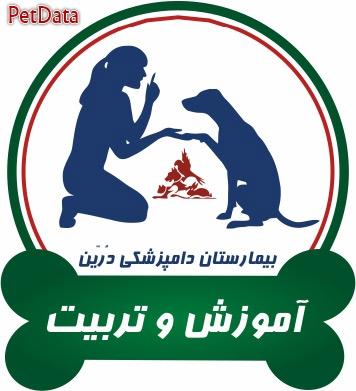 آموزش و تربيت حيوانات خانگي دامپزشکي درین