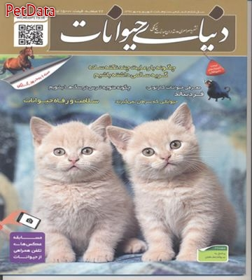 فروش مجله دنياي حيوانات شماره بيست وهشت شهريورماه 1397