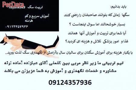 آموزش تربيت سگ  رامين عبازاده