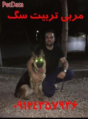 آموزش تربيت سگ 09124357936