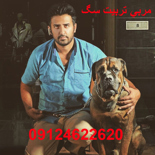 <a rel=nofollow style='color:blue' title='مربی'  href='http://www.google.com/search?q=site%3Awww.petdata.ir/full_ads.php+مربی' > <strong>مربی</strong></a> <a rel=nofollow style='color:blue' title='تربیت'  href='http://www.google.com/search?q=site%3Awww.petdata.ir/full_ads.php+تربیت' > <strong>تربیت</strong></a> <a rel=nofollow style='color:blue' title='سگ'  href='http://www.google.com/search?q=site%3Awww.petdata.ir/full_ads.php+سگ' > <strong>سگ</strong></a> علی <a rel=nofollow style='color:blue' title='فیروزبخت'  href='http://www.google.com/search?q=site%3Awww.petdata.ir/full_ads.php+فیروزبخت' > <strong>فیروزبخت</strong></a>